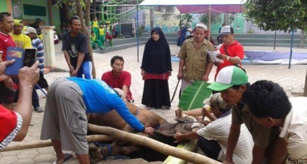 Suasana Perayaan Idul Adha 1437 H MIN Demangan Kota Madiun