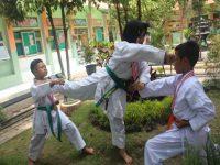 Ekstrakurikuler Karate